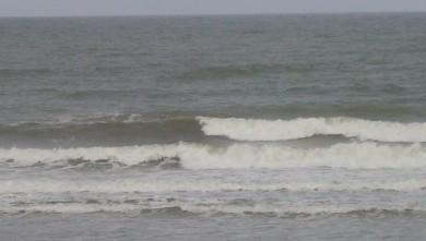 Surf report FR, Grand Village (17) du 2008-07-12 12:00:00