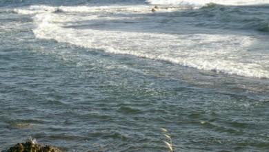 Surf report FR, L'Almanarre (83) du 2008-07-13 12:00:00