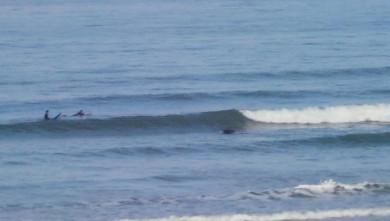 Surf report FR, Grand Village (17) du 2008-07-19 12:00:00