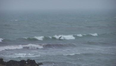 wave report FR, La Torche (29) du 2008-07-19 12:00:00