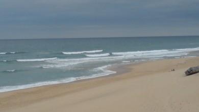 Surf report FR, Cap-Ferret - Plage de L'Horizon (33) du 2008-07-20 12:00:00