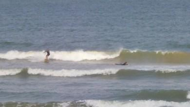 Surf report FR, Grand Village (17) du 2008-07-20 12:00:00