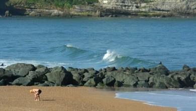 Surf report FR, Anglet VVF (64) du 2008-07-22 12:00:00