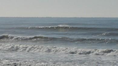 Surf report FR, Les Grenettes (17) du 2008-02-02 11:00:00