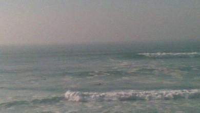 Surf report FR, Lacanau Océan - La Nord (33) du 2008-02-22 15:00:00