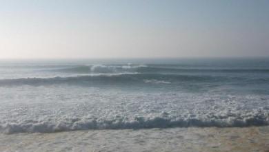 Surf report FR, Lacanau Océan - La Nord (33) du 2008-02-22 12:00:00