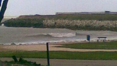 Surf report FR, La Rochelle - Chef de Baie (17) du 2008-03-31 12:00:00