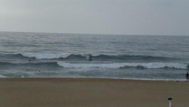 Surf report FR, Anglet Corsaires (64) du 2008-07-24 12:00:00