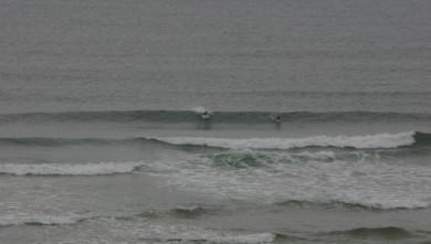 Surf report FR, Vieux Boucau (40) du 2008-04-10 10:00:00
