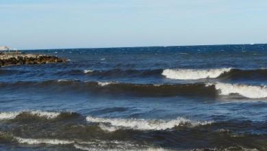 Surf report FR, Le Prado (13) du 2008-06-14 06:00:00
