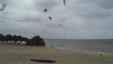 wind report FR, Hourtin port (33) du 2008-08-02 11:00:00