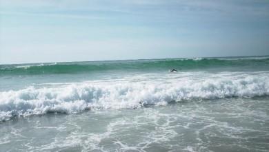 Surf report FR, Vieux Boucau (40) du 2008-08-09 18:00:00