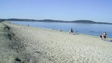 Surf report FR, L'Almanarre (83) du 2008-07-29 12:00:00