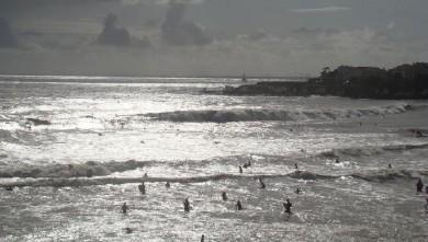 Surf report FR, Royan - Pontaillac (17) du 2008-08-19 15:00:00