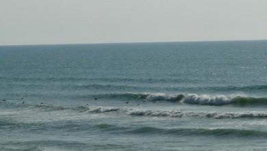 Surf report FR, Vieux Boucau (40) du 2008-08-21 19:00:00