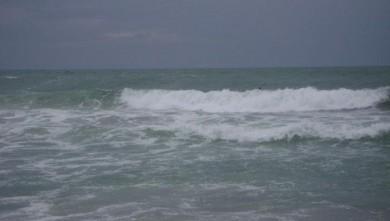 Surf report FR, Anglet Les Cavaliers (64) du 2008-09-05 16:00:00