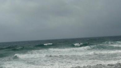 Surf report FR, Sausset les Pins - Plage du Port (13) du 2008-09-06 08:00:00