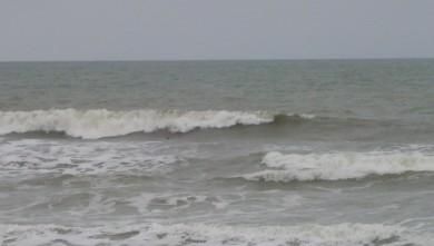 wave report FR, Grand Village (17) du 2008-08-03 12:00:00