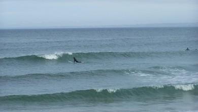 Surf report FR, La Torche (29) du 2008-08-05 12:00:00