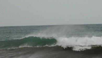 Surf report FR, Le Prado (13) du 2008-11-29 13:00:00