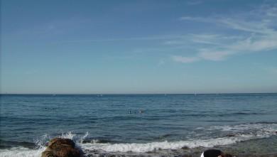 Surf report FR, Sausset les Pins - Plage du Port (13) du 2008-08-10 12:00:00