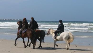 Surf report FR, Plovan (29) du 2008-08-24 12:00:00