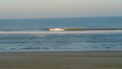 Surf report FR, Cap-Ferret - Plage de L'Horizon (33) du 2008-08-29 12:00:00