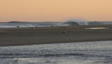 wave report FR, Seignosse - Les Casernes (40) du 2008-08-29 12:00:00