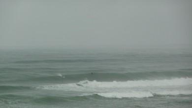 Surf report FR, Cap-Ferret - Plage de L'Horizon (33) du 2008-09-03 12:00:00