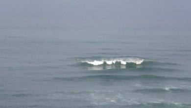 Surf report FR, Guethary Parlementia (64) du 2008-09-03 12:00:00