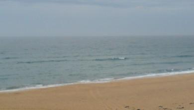 Surf report FR, Cap-Ferret - Plage de L'Horizon (33) du 2008-09-09 12:00:00