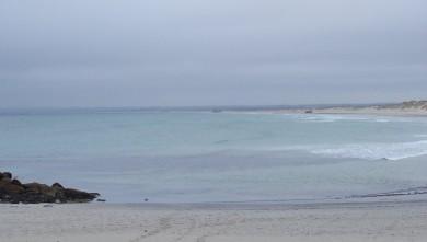Surf report FR, La Torche (29) du 2008-09-09 12:00:00