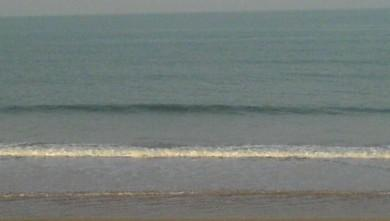 Surf report FR, Grand Village (17) du 2008-09-19 12:00:00
