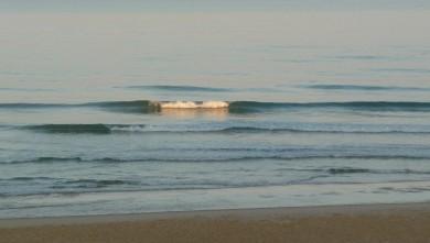 Surf report FR, Cap-Ferret - Plage de L'Horizon (33) du 2008-09-29 12:00:00