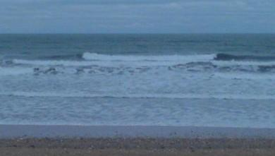 Surf report FR, Grand Village (17) du 2008-10-21 12:00:00