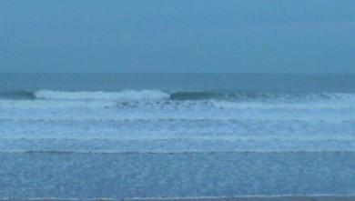 Surf report FR, Grand Village (17) du 2008-10-22 12:00:00