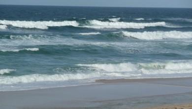 Surf report FR, Cap-Ferret - Plage de L'Horizon (33) du 2008-11-07 12:00:00