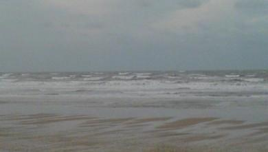 Surf report FR, Grand Village (17) du 2008-11-11 12:00:00