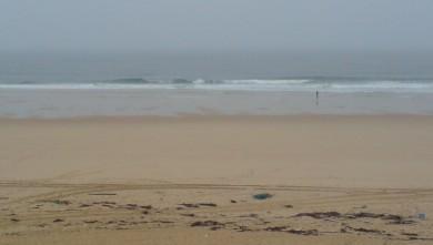 Surf report FR, Cap-Ferret - Plage de L'Horizon (33) du 2008-11-14 12:00:00