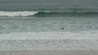 Surf report FR, Cap-Ferret - Plage de L'Horizon (33) du 2008-11-20 12:00:00