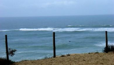 Surf report FR, Seignosse - Les Bourdaines (40) du 2008-11-22 12:00:00