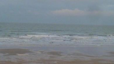 Surf report FR, Grand Village (17) du 2008-11-28 12:00:00