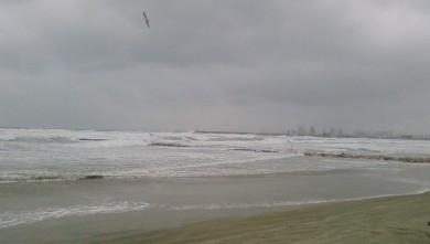 wave report FR, Palavas-les-Flots - Rive Droite (34) du 2008-01-03 12:00:00