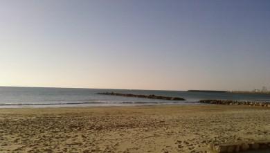 wave report FR, Palavas-les-Flots - Rive Droite (34) du 2008-01-26 12:00:00