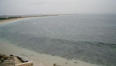 wave report FR, L'Almanarre (83) du 2008-01-29 12:00:00