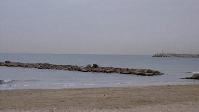 wave report FR, Palavas-les-Flots - Rive Droite (34) du 2008-01-29 12:00:00