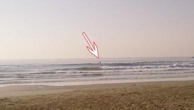 Surf report FR, Palavas-les-Flots - Rive Droite (34) du 2008-02-15 12:00:00