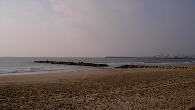 Surf report FR, Palavas-les-Flots - Rive Droite (34) du 2008-02-16 12:00:00