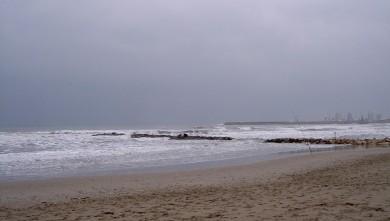Surf report FR, Palavas-les-Flots - Rive Droite (34) du 2008-02-20 12:00:00