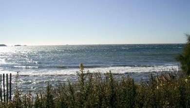 Surf report FR, L'Almanarre (83) du 2008-03-06 12:00:00